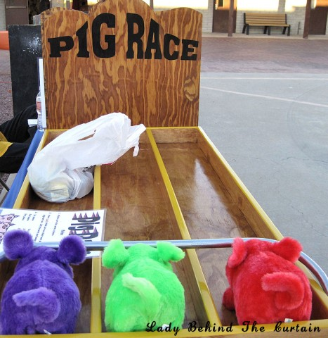 Lady Behind The Curtain - Pig Race