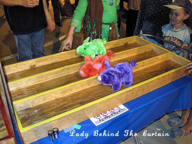 Lady Behind The Curtain - Pig Race Game