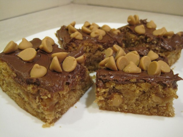 Lady Behind The Curtain - Peanut Butter Blondies