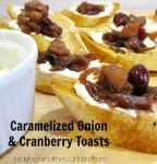 Caramelized Onion and Cranberry Toasts