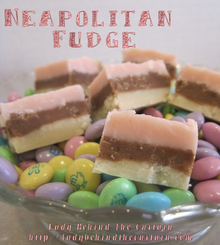neapolitan fudge