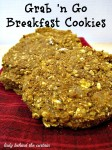 Hungry Girl – Grab 'n Go Breakfast Cookies