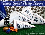 Team Spirit Party Favor