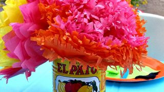 Fiesta Tissue Flowers