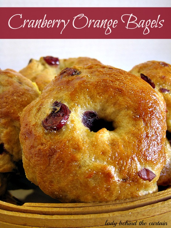 Lady-Behind-The-Curtain-Cranberry-Orange-Bagel