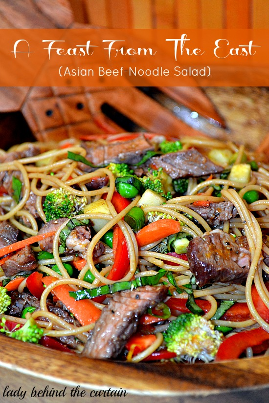 Lady-Behind-The-Curtain-Feast-From-The-East-Asian-Beef-Noodle-Salad