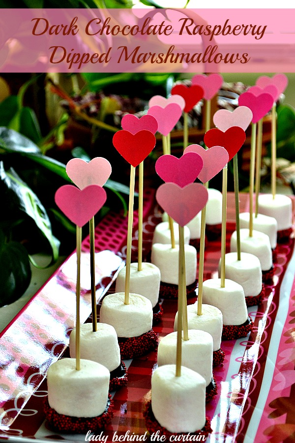 Lady Behind The Curtain - Dark Chocolate Raspberry Dipped Marshmallows