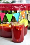Alcohol Free – Sangria