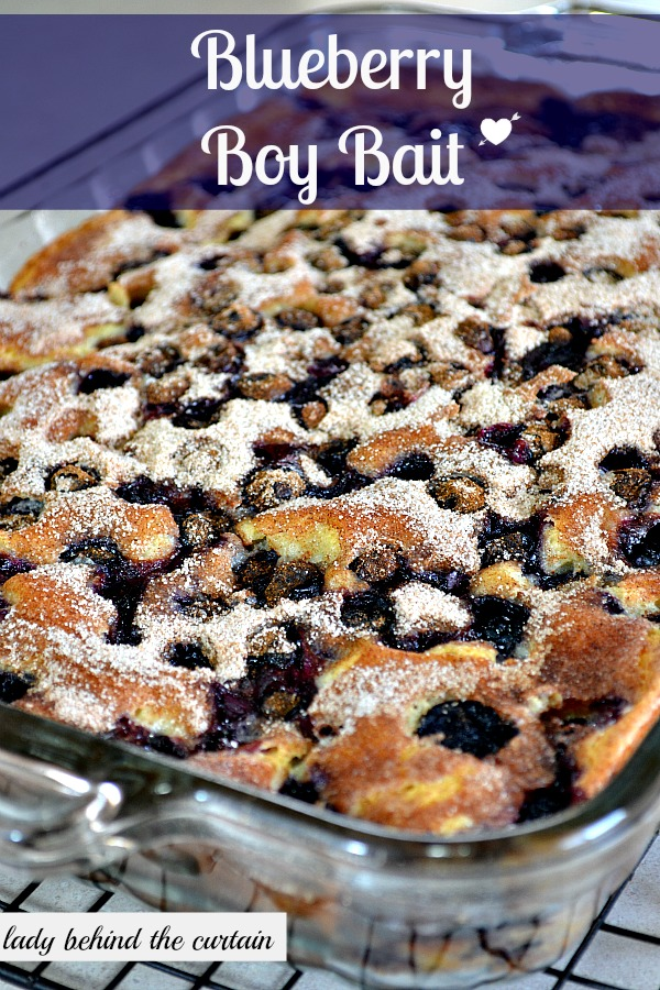 Blueberry Boy Bait {Blueberry Coffee Cake}