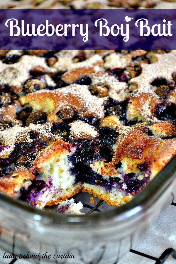Blueberry Boy Bait {Blueberry Coffee Cake}