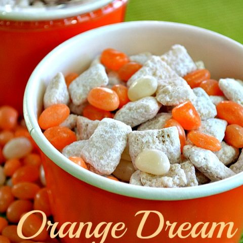 Orange Dream Puppy Chow