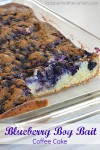 Blueberry Boy Bait Coffee Cake