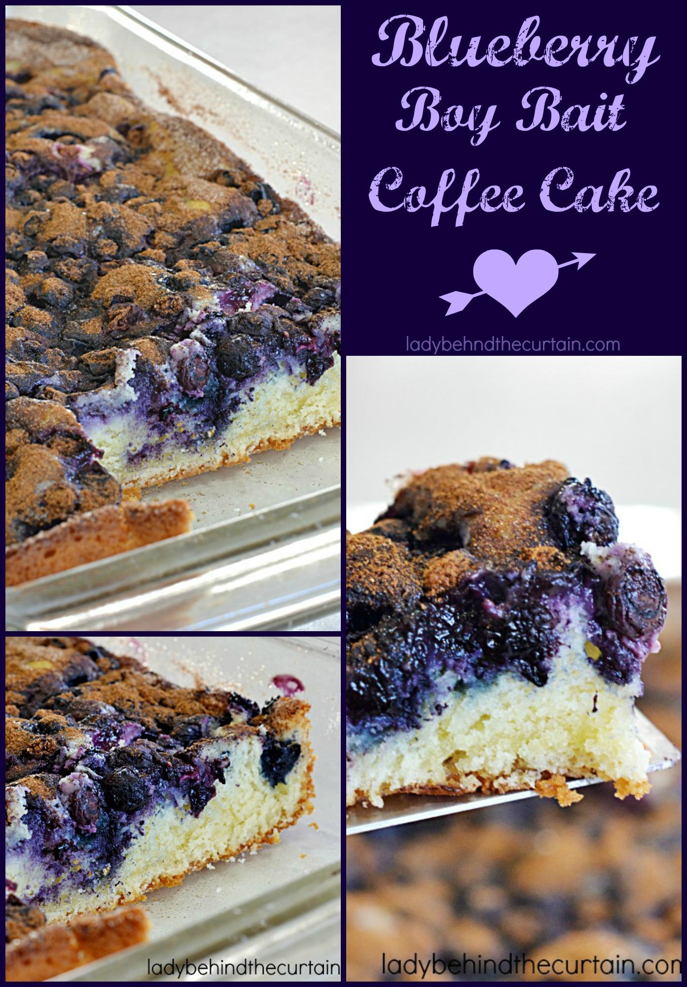 Blueberry Boy Bait Coffee Cake