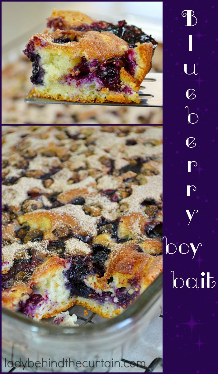 Blueberry Boy Bait:  A super easy cake to make with a fun name!