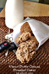 Peanut Butter-Oatmeal Breakfast Cookies