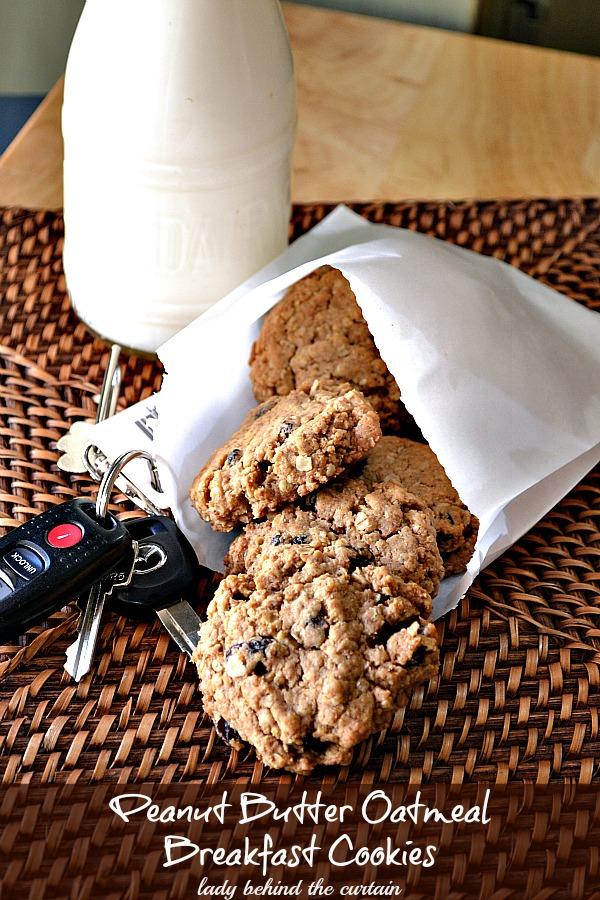 Peanut Butter-Oatmeal Breakfast Cookies