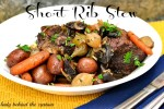 Slow Cooker – Short Rib Stew