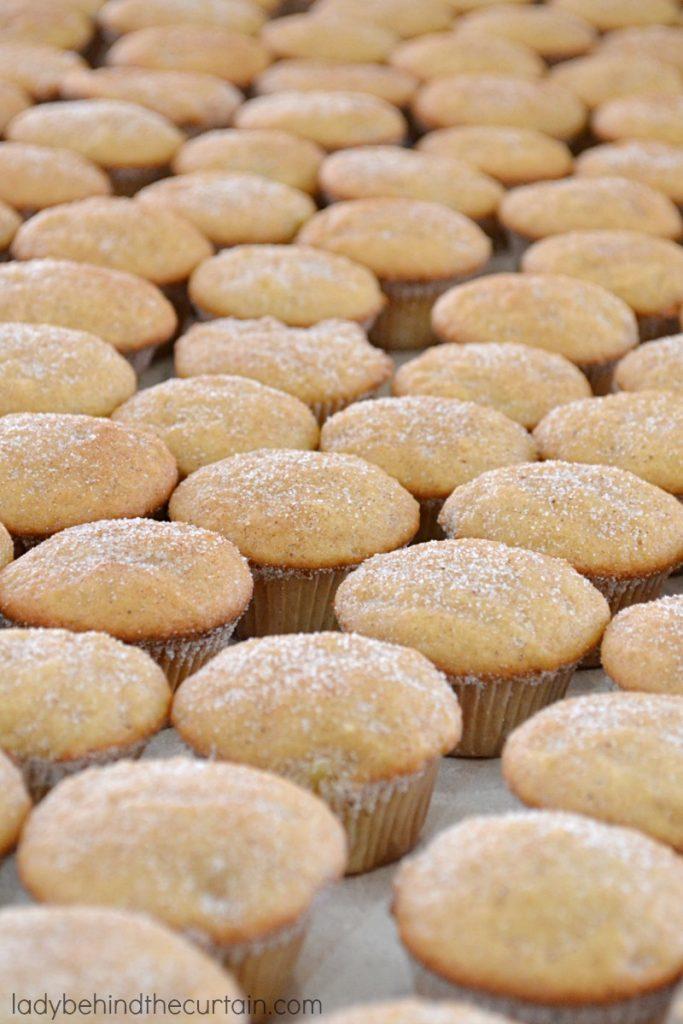 Chunky Applesauce Mini Muffins