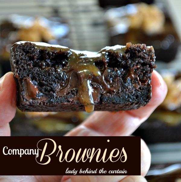 Lady Behind The Curtain - Company Brownies