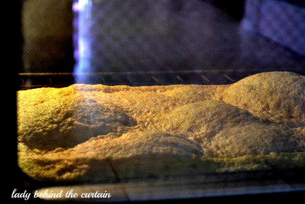 Lady Behind The Curtain - Strawberry Mallow Cake Roll