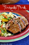 {Slow Cooker} Teriyaki Pork