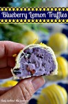 Blueberry Lemon Truffles ~ Behind The Curtain Dessert Challenge