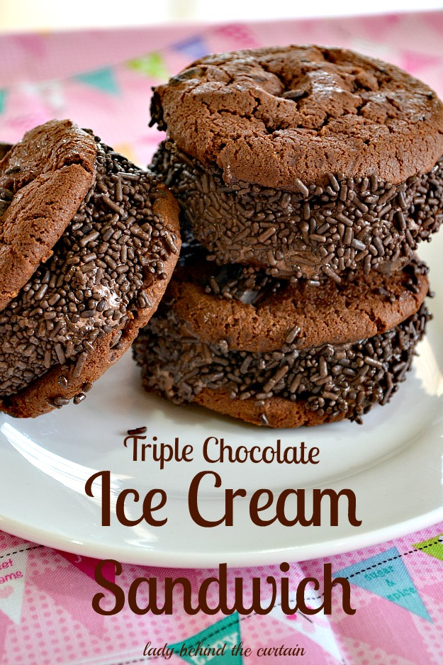 ... AND YOU CAN BE ENJOYING THIS TRIPLE CHOCOLATE ICE CREAM SANDWICH
