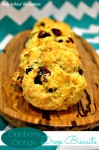 Cranberry Orange Drop Biscuits