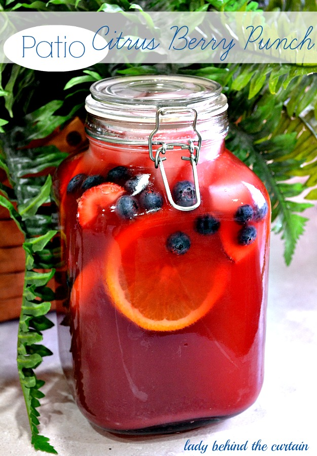Patio Citrus Berry Punch - Lady Behind The Curtain
