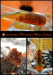 Halloween Witches Wart Juice