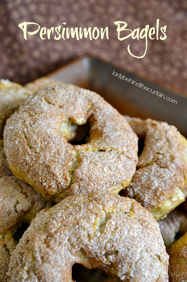 Persimmon Bagels - Lady Behind The Curtain