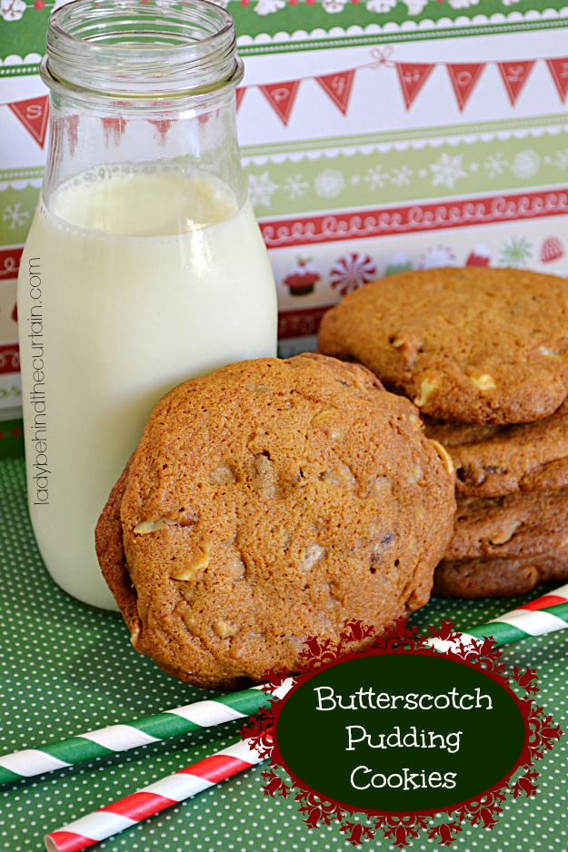 Butterscotch-Pudding-Cookies-Lady-Behind-The-Curtain-2