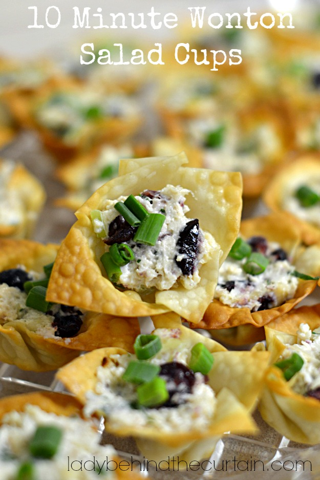 10 Minute Wonton Salad Cups - Lady Behind The Curtain