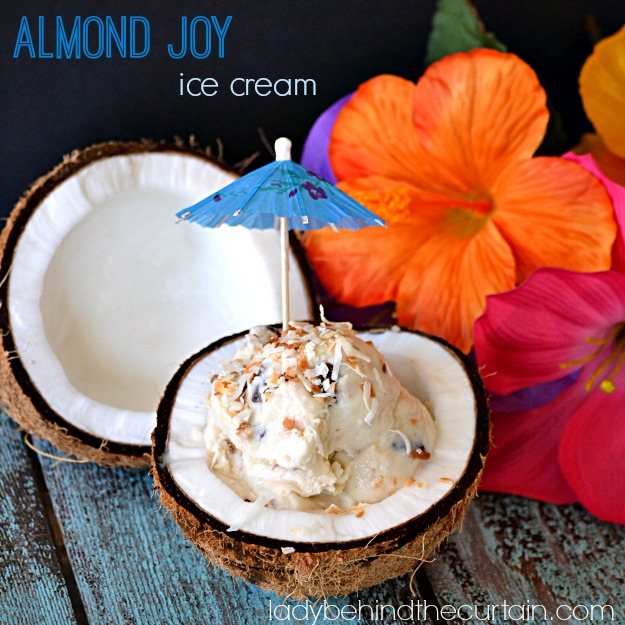 Almond Joy Ice Cream - Lady Behind The Curtain