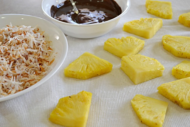 Tropical Pineapple Wedge Candy - Lady Behind The Curtian