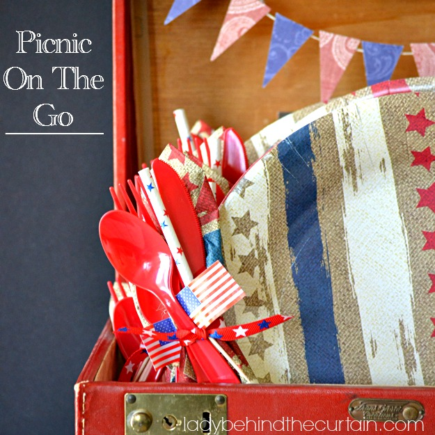 Picnic On The Go - Lady Behind The Curtain