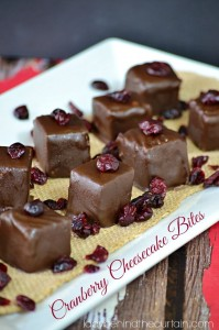 Cranberry Cheesecake Bites - Lady Behind The Curtain