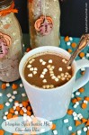 Pumpkin Spice Instant Hot Chocolate Mix