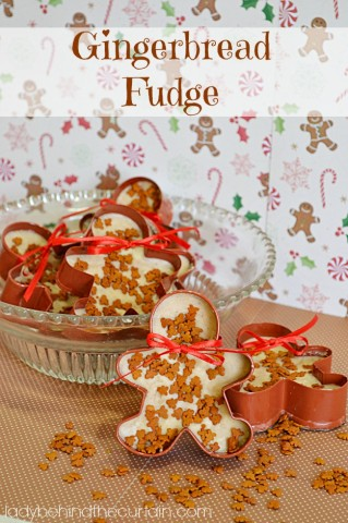 Gingerbread-Fudge-Lady-Behind-The-Curtain-4