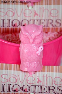 Save the Hooters Chocolate Suckers - Lady Behind The Curtain