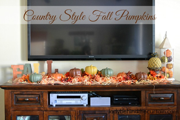 Diy Dollar Tree Country Style Fall Pumpkins on Home Decor Store