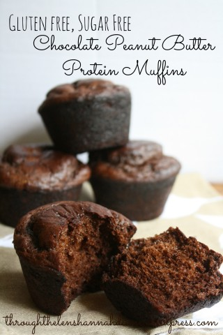 chocolate-peanut-butter-protein-muffins