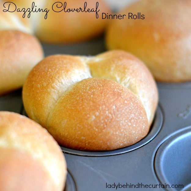 Six Dazzling Dinner Rolls - Lady Behind The Curtian