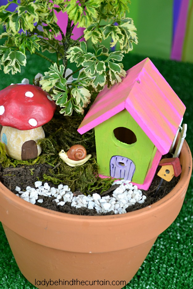 Living Fairy Garden Party Favor