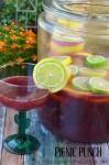 Picnic Punch