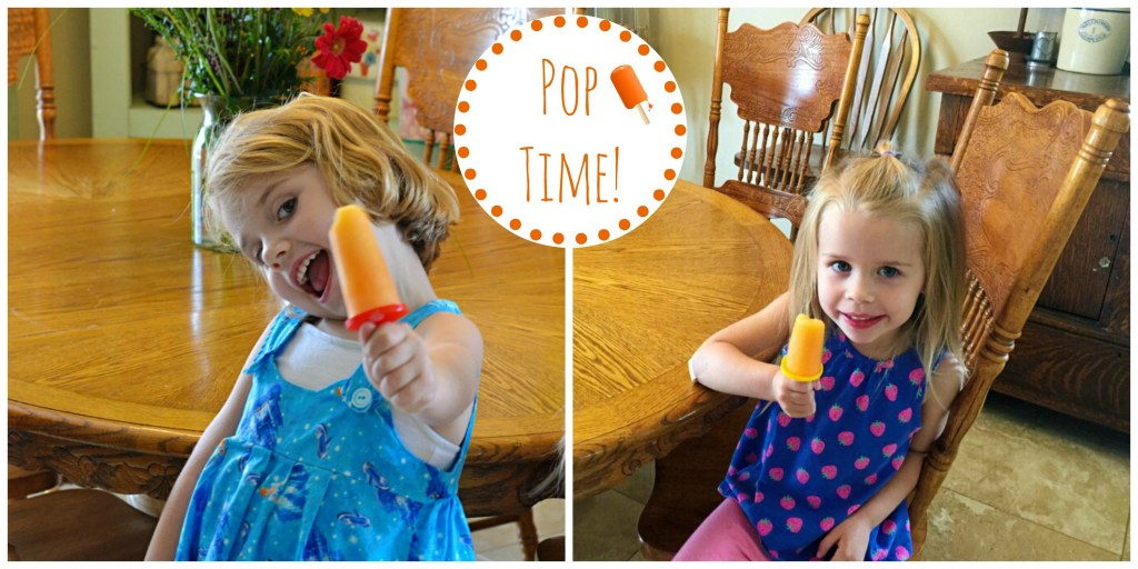 Easy Tropical Juice Pops - Lady Behind The Curtain