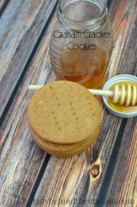 The perfect crunchy cookie for eating alone, used as an outer layer of an ice cream sandwich or ground up as a crust.