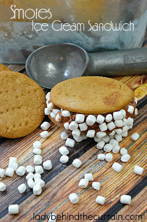 The perfect treat when it's too hot for a campfire and you're craving a s'mores make it into an ice cream sandwich!