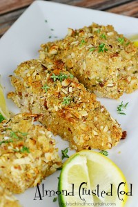 Almond Crusted Cod | A moist and tender fish full of flavor with beer, almonds, bread crumbs and fresh thyme.