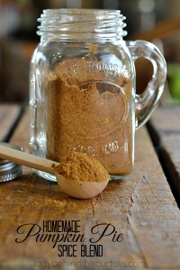 Homemade Pumpkin Pie Spice Blend | Bring the warm flavors of Fall to your table with this easy to make spice blend.
